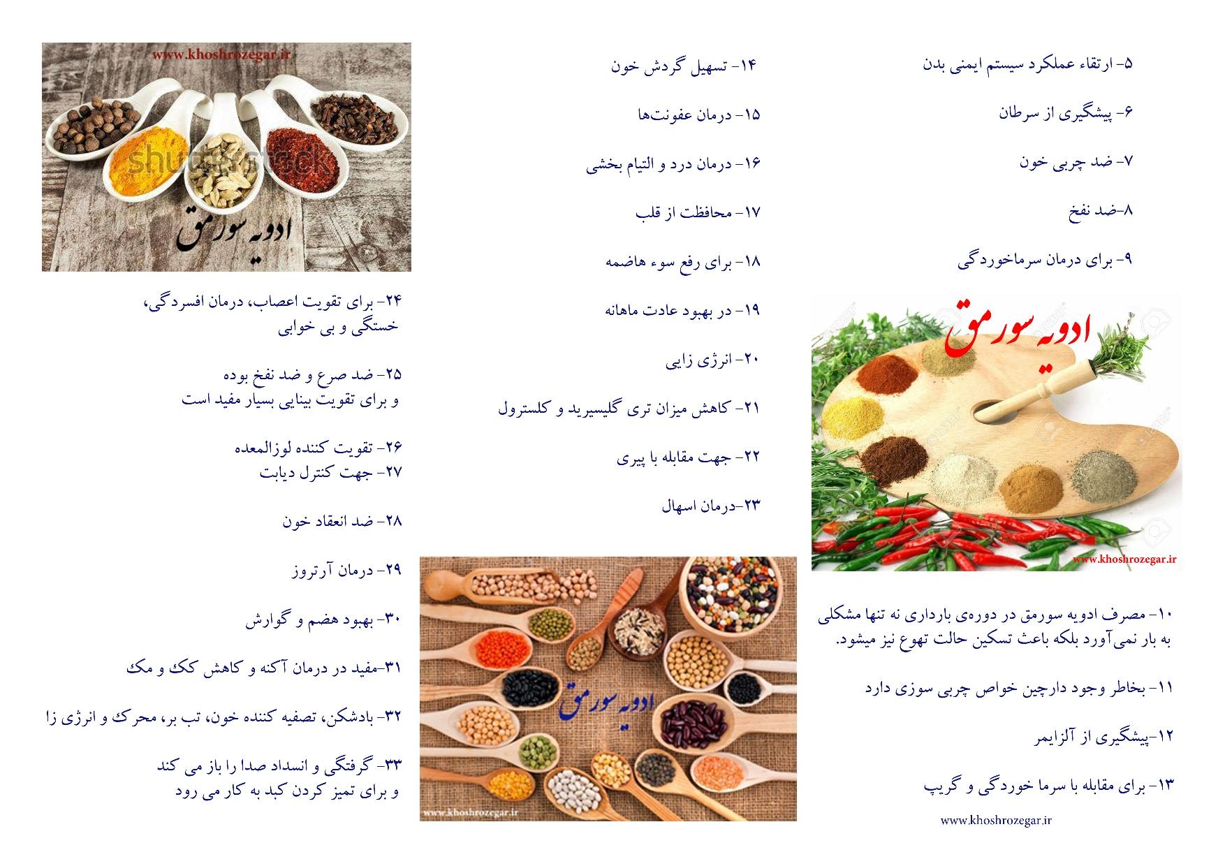 a2.. خواص درمانی و دارویی ادویه جات در طب سنتی ایران سورمق